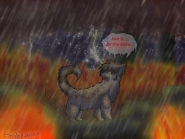 Ashfur love is for the blind by tanglepath7