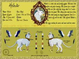 Refsheet for Heledir by Bass-pick