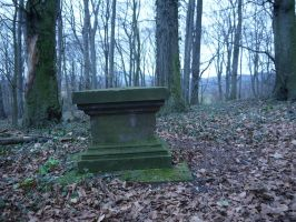 Graveyard in the forest 5 by Dragoroth-stock