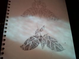 Leaves- Pen and Pencil Drawings by MyVisionIsDying