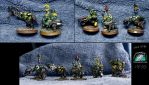 Converted Flash gitz by Snowfyre
