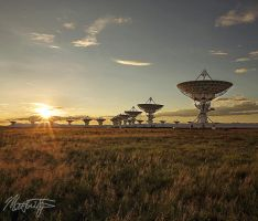 VLA at Sunset by MattTilghman