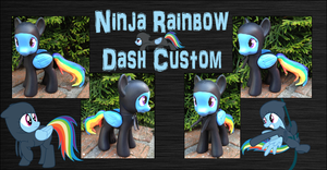 My Little Pony - Ninja Rainbow Dash Custom by Asukatze