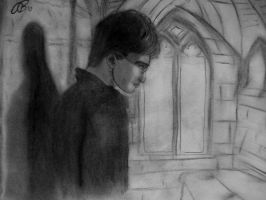 Harry in the Hall by AshleyWithAHeart
