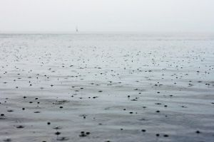rain at Lake Constance by Rona-Keller