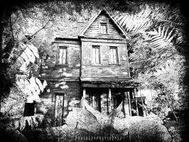 The Haunted House.. by soraxP