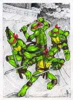 TMNT_Mirage by KeddyBreeze