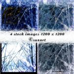 Texture Winter Grunge by Schemas-Psychology