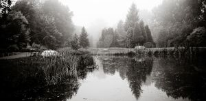 Lake in Mist by ghito