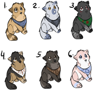 Dog adopts by PointAdoptsforyou