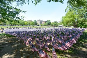 Memorial Day, Sea Of Flags 2 by Miss-Tbones