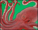 Octopus in Acrylics by ginsengi