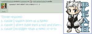 question7: neko me.. O.O by AskCaptainToshiro