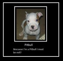 Pitbulls by GinnyWeasly18