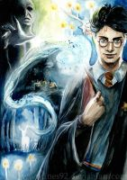 Harry Potter by Ines92
