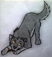 Balto puppy by ArticWolf14