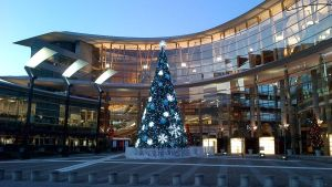 Christmas tree at Surrey Central Mall 1 by mc1964