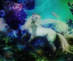 seahorse by Kathamausl