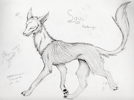 Soul: Redesigned by darkgracedragon
