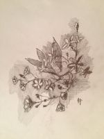 StarFlowers.Pencil.Decorative by VLStone