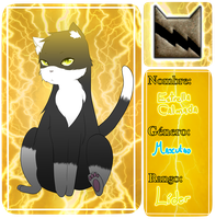 Warrior Cats Roleplay: Calmstar by KittyPony-Drawings