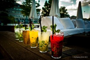 The Mojito family 2 by wulfman65
