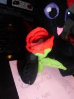 Example of what a plushie can hold - rose :) by Mandy-Lou-Plushies