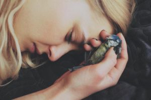 little bird. by laura-makabresku