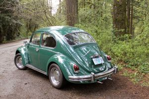 Green Bug 2 by Marcusstratus
