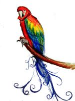 Rainbow Parrot by vivsters