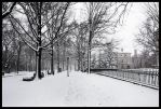 New Haven Winter by hesitation