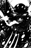 Wolverine DS by Cinar