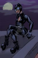 Catwoman by Stnk13