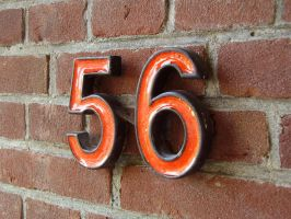 The number fiftysix by Tikury
