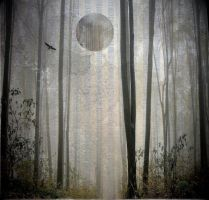 Surreal Forest Background by mysticmorning