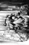 Flash cover by Cinar