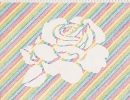 White Rose Rainbow by TsukikoTakahashi