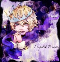 Fan art - Le Petit Prince by Allisaer