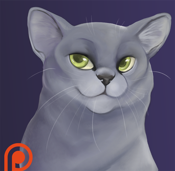 Dovewing Warm Up [Patreon] by Hoxau