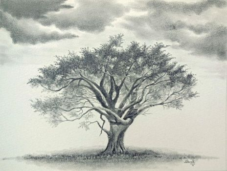 Thorn Acacia Tree by aakritiarts
