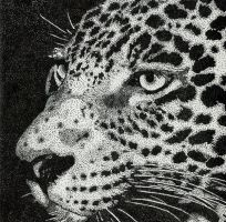 Jaguar on dots by Chipilina21