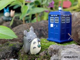 Totoro's Tardis 2 by meaches