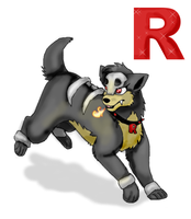 i work for team rocket by timmy-gost