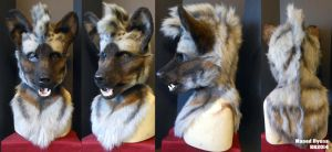 Maned Hyena Head by Magpieb0nes