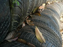 Tires and Leaves 1 by Moka898