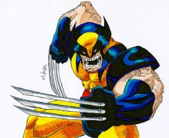 Wolverine by MikeES