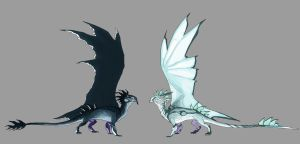 Black, White Wing by Black-Wing24