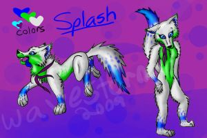 Splash ref by Wavestorm101