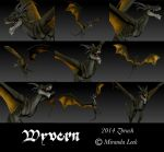 Wyvern by railrunnermiranda