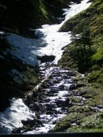 Creek at Hurricane Ridge by pokemontrainerjay